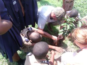Peace Corps volunteer Duncan Galler traveled from St. Elizabeth to show the proper way to plant citrus trees.
